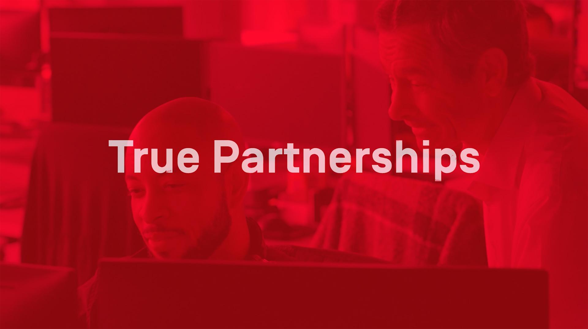 True Partner – Skender Core Value